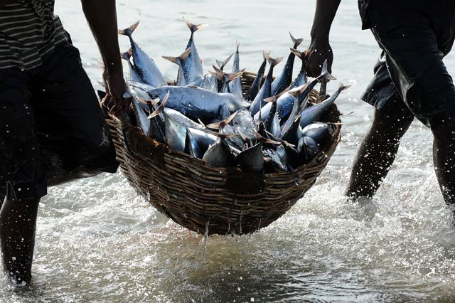 FishingSlaves_640.jpg