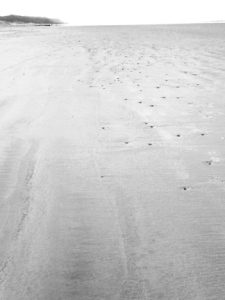 Sand2blog
