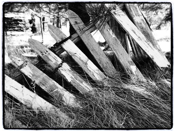 Fence.blog