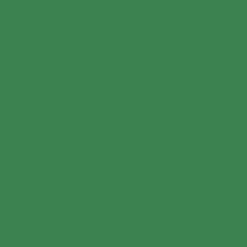 Leprechaunswatch