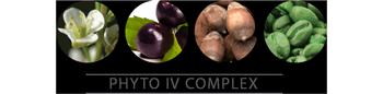 Abyssinian Seed Oil • Babassu Kernel Oil • Açaí Fruit Oil • Coffee Seed Oil