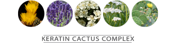 Cactus Flower • Lavender • Hawthorn Fruit Extract • Meadowfoam Flower