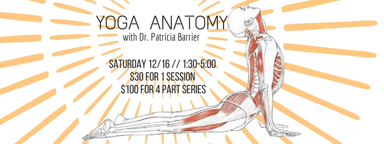 Are you a yoga student who wants to know more about how your body WORKS while you are in your practice? Are there specific poses that you struggle with physically, or are confused about how to embody in the most beneficial way?   This Anatomy workshop is part of a series that is being offered by retired physician and yoga teacher Dr. Patricia Barrier. She will be covering all the basics to help you get a better understanding of how your body works within your yoga asanas, and to gain a deeper connection to your practice, and any issues you may be facing in specific yoga poses.   SATURDAY 12/16  1:30-5:00PM // $30 FOR 1 SESSION // $100 FOR 4 PART SERIES // LED BY DR.  PATRICIA BARRIER // *CLICK IMAGE TO REGISTER   IF YOU ARE INTERESTED IN PURCHASING THE 4 PART SERIES, THE DATES FOR THE REST OF THE SESSIONS ARE:   JANUARY 13 1:30-5 // FEBRUARY 10 1:30-5  // MARCH 10 1:30-5