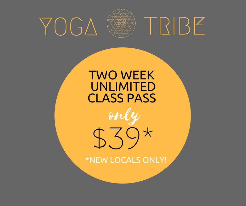 Are you new to Yoga Tribe? Get two weeks of unlimited yoga classes! Come and try out the studio and see if our classes and teachers are the right fit for you!