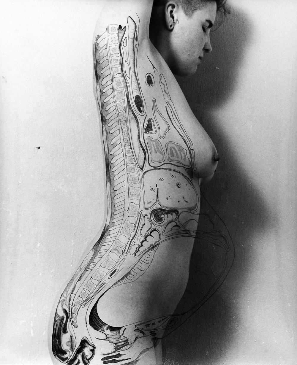 """Angela, Gestation"". 2011. 16x20. Silver Gelatin with Ink Overlay."