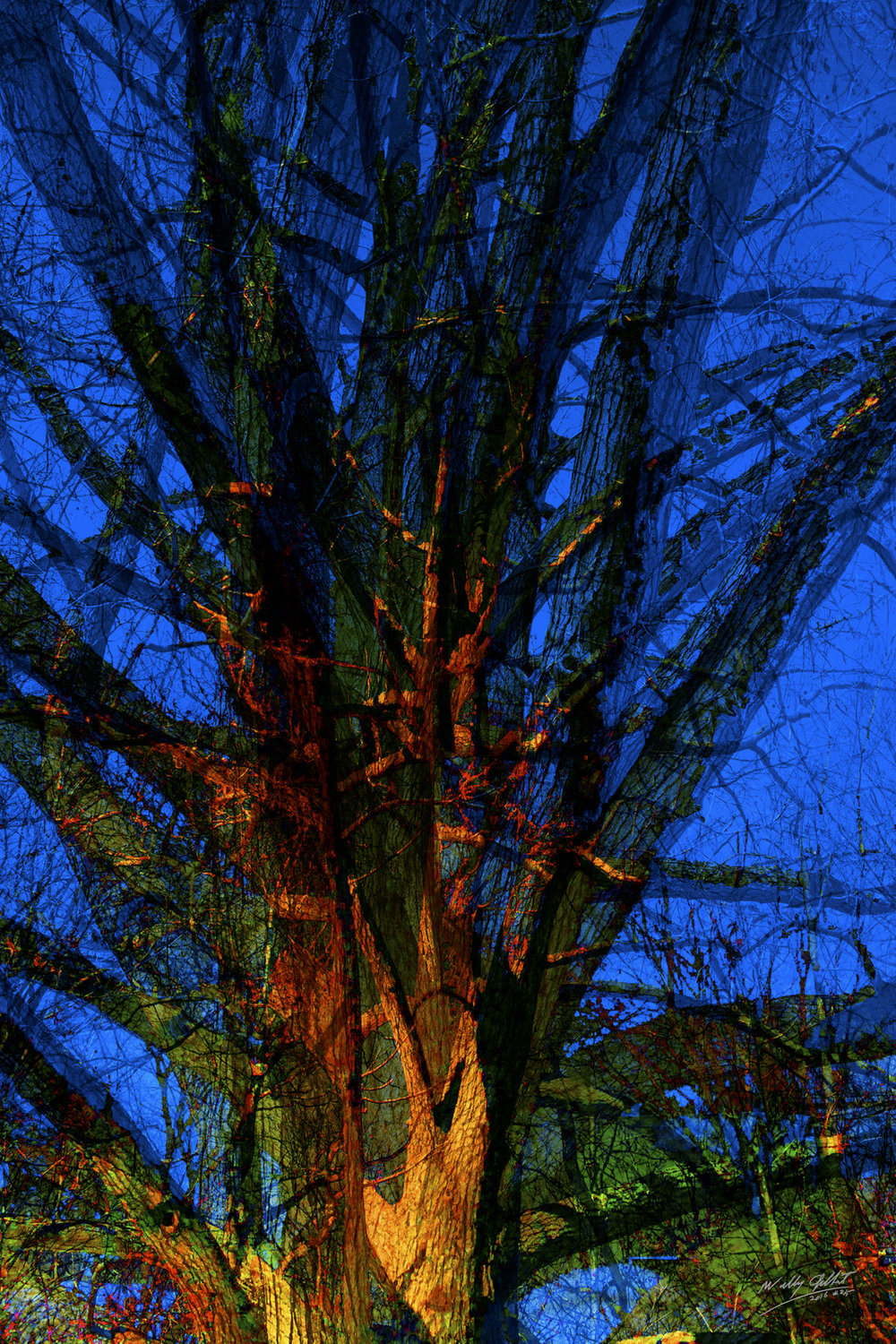 """Trees - Blue""  A 60"" x 40"" panel on a Flush Mount. Digital print on Aluminum with a high gloss finish."