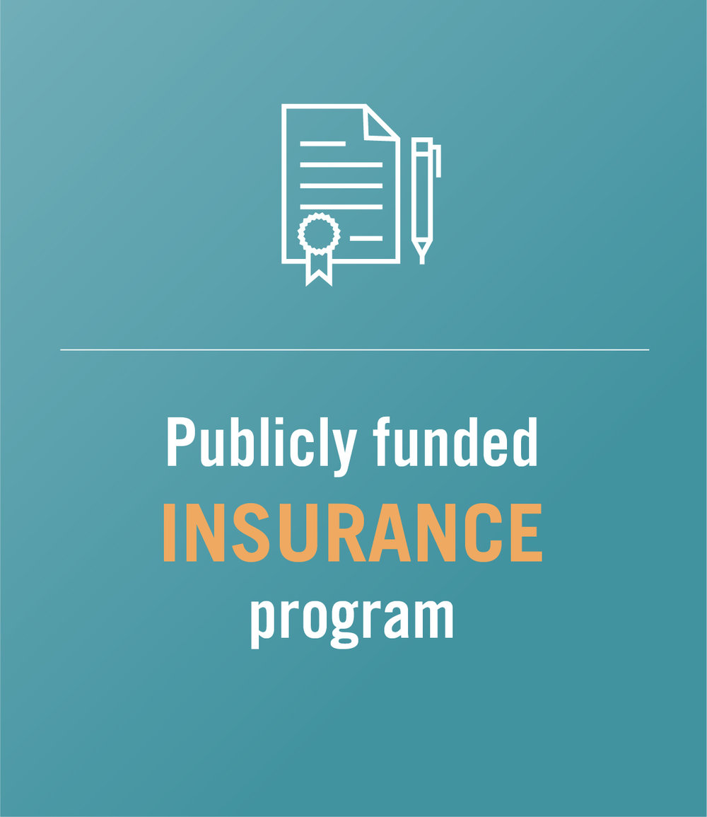 Publicly funded insurance program