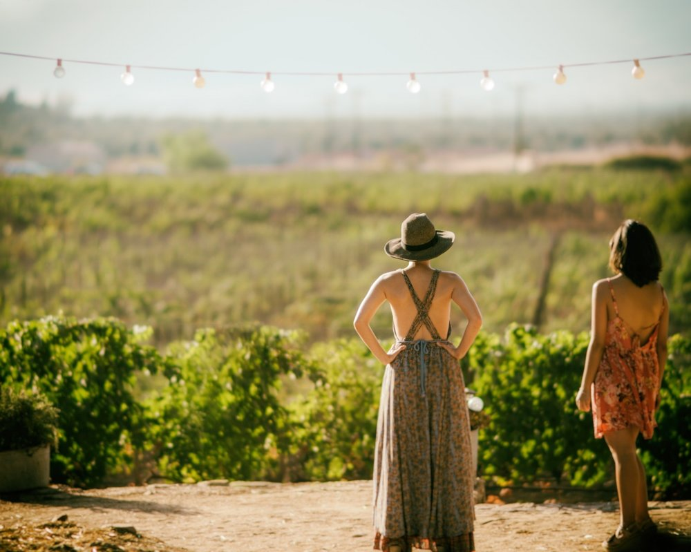 two women look out at a vineyard