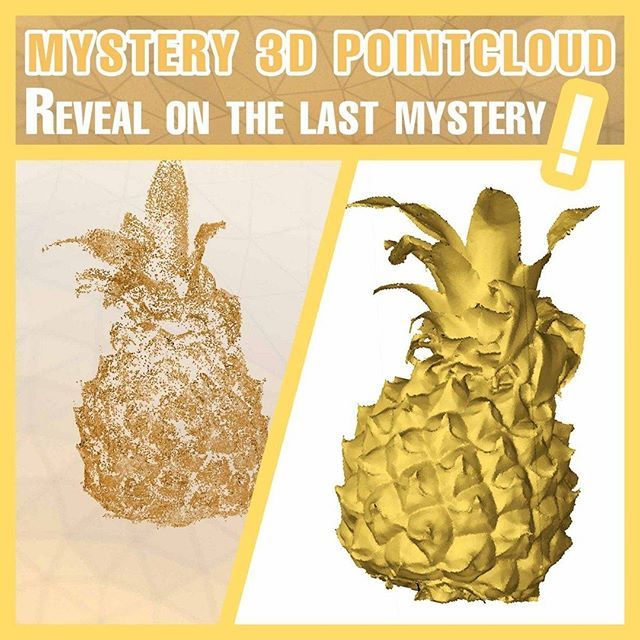 Duplicate3D wil zijn verhaal delen Duplicate3D: #M3DP Mystery 3D Pointcloud revealed!😮 The answer on the last 3D scan 😁  It's a Mini Pineapple #3d #3dprint #3dprinting #3dscan #3dscanning #geometry #photogrammetry #art #artist #quiz #cool #guess # cute #game #mystery #answer