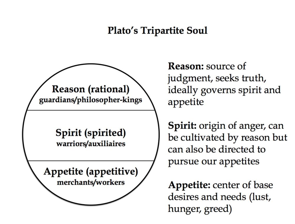Plato on the soul.jpeg