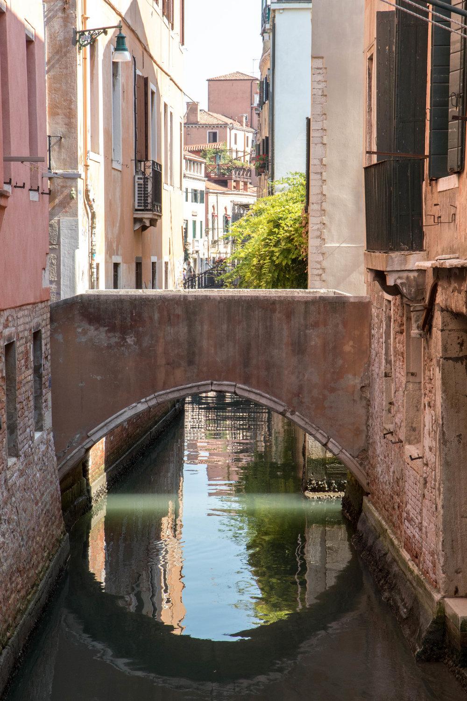 VenetianLight6ShannonHammondPhotography.jpg