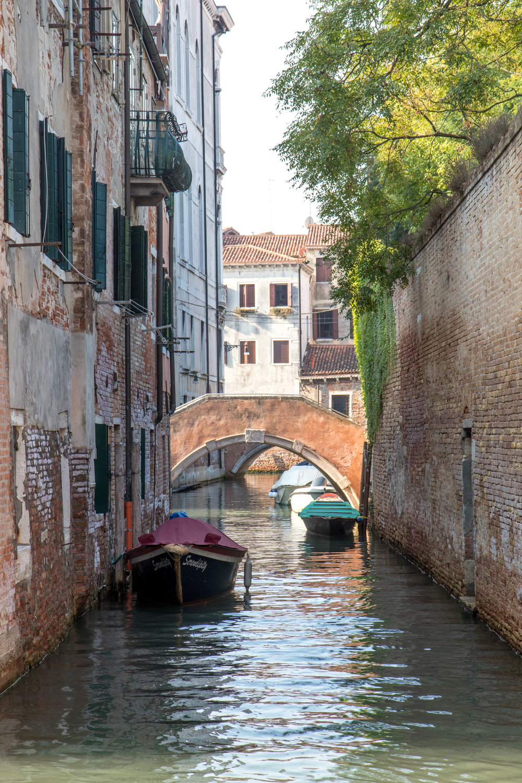 VenetianLight7ShannonHammondPhotography.jpg