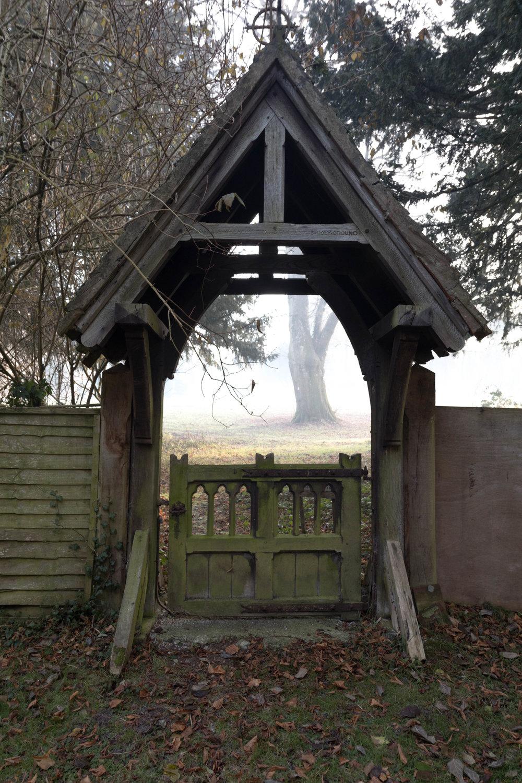 Misty Winter Mornings - Shannon Hammond Photography-14.jpg
