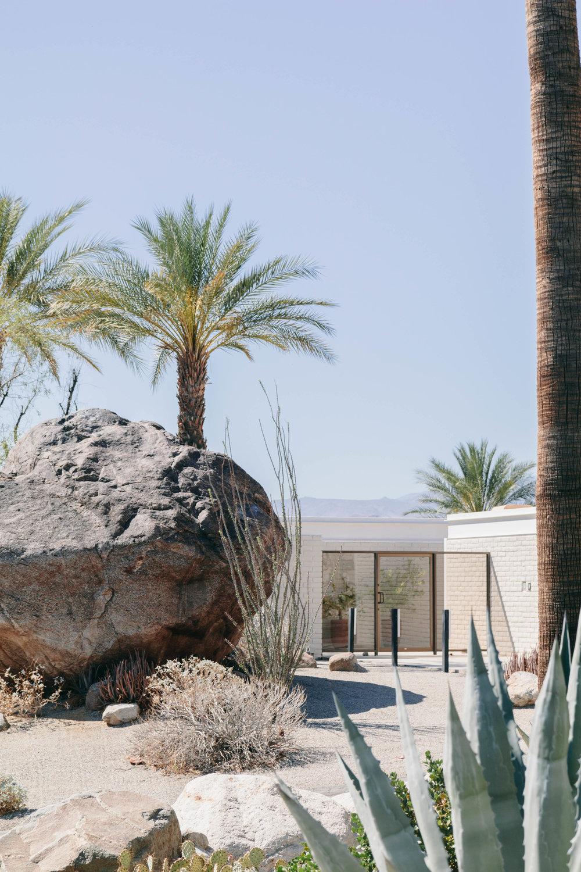Shannon Hammond Photography - Palm Springs-11.jpg