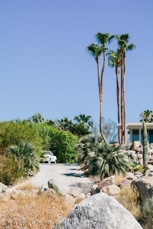 Shannon Hammond Photography - Palm Springs-14.jpg
