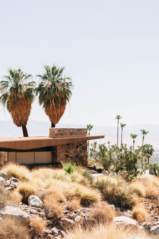 Shannon Hammond Photography - Palm Springs-15.jpg