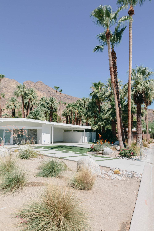 Shannon Hammond Photography - Palm Springs-26.jpg
