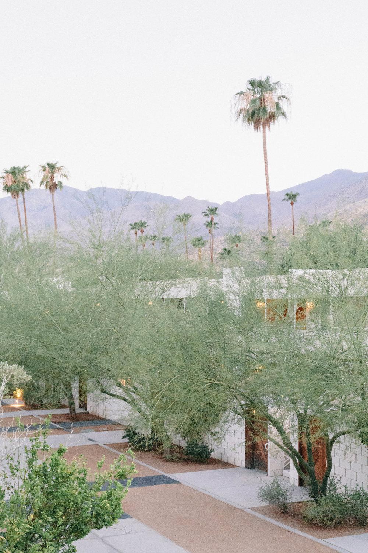Shannon Hammond Photography - Palm Springs-2.jpg