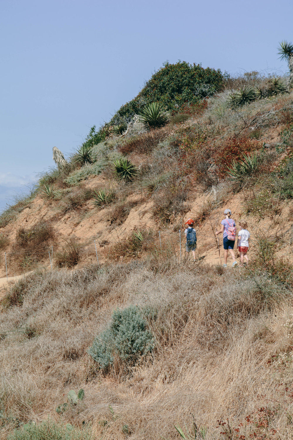 Shannon Hammond Photography - Coastal Hikes-0879.jpg