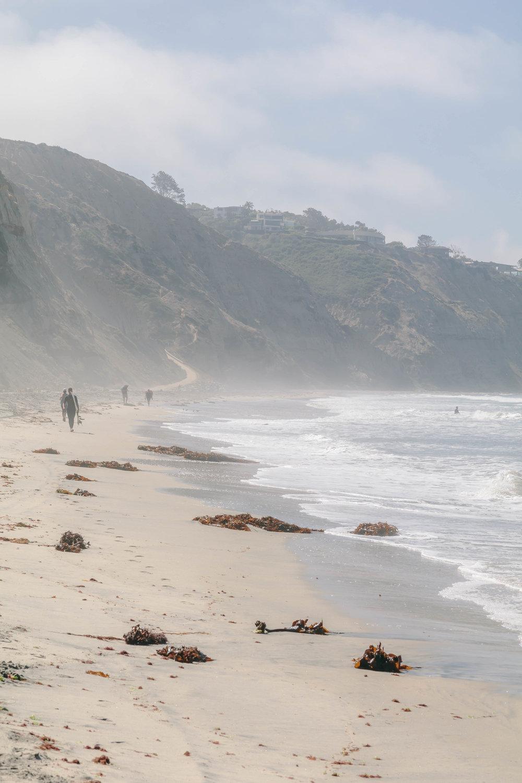 San Diego Hikes - Shannon Hammond Photography-28.jpg
