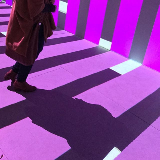 #sundancefilmfestival2019 #vrexperience was lit 🔥