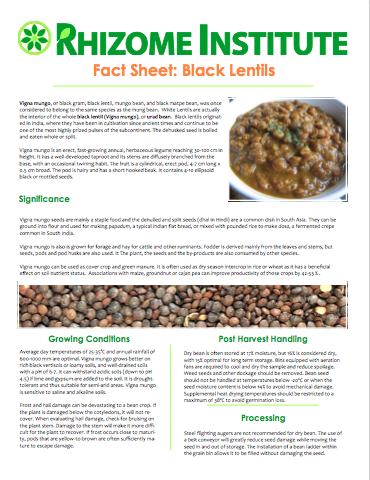 Black Lentil Fact Sheet image.png