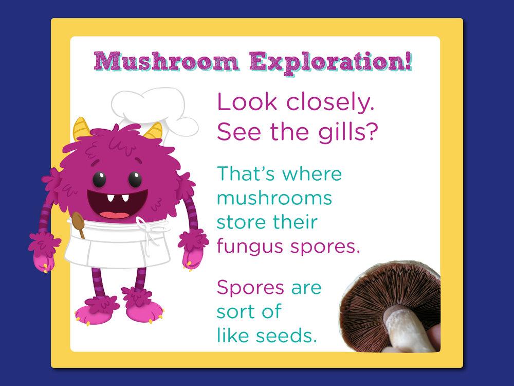 08_MushroomTomatoPizza_mushroom exploration-01.jpg