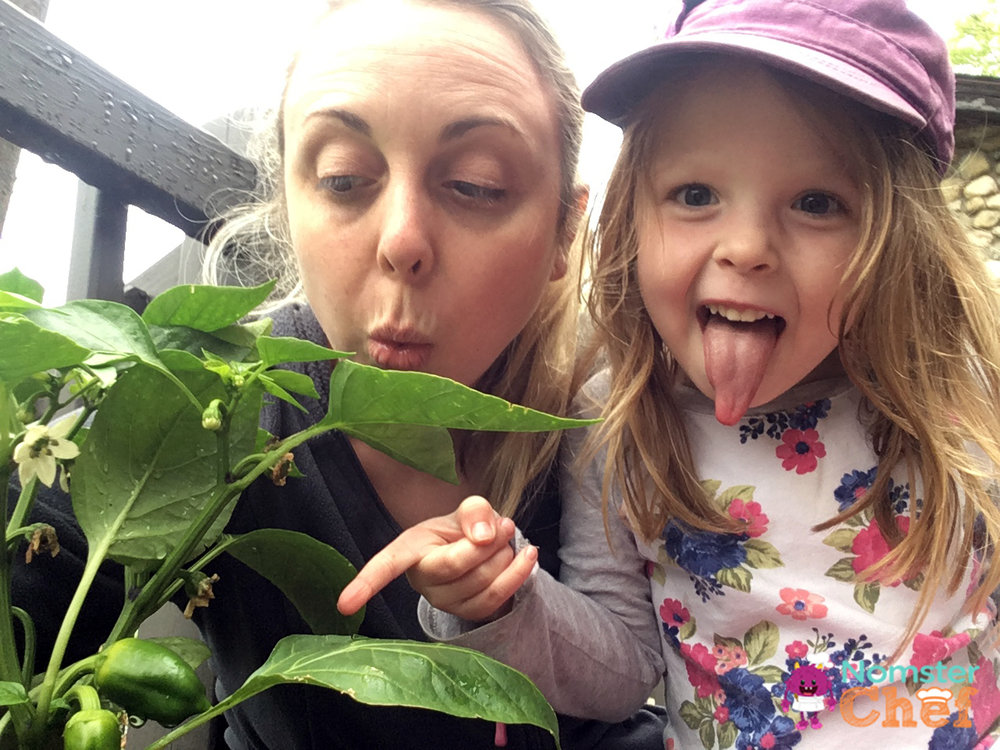 Gardening-with-Kids | Pepper-plant | Nomster Chef