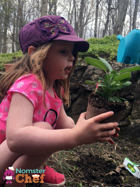 Gardening-with-kids | kids-planting-herbs | Nomster Chef