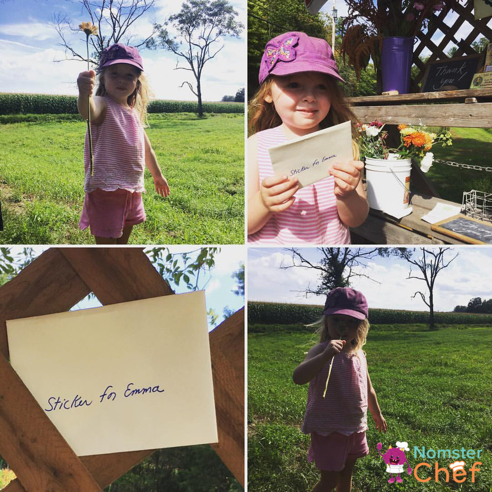 Summer fun for kids- visit a farm and learn how food grows-farm flower-Nomster Chef