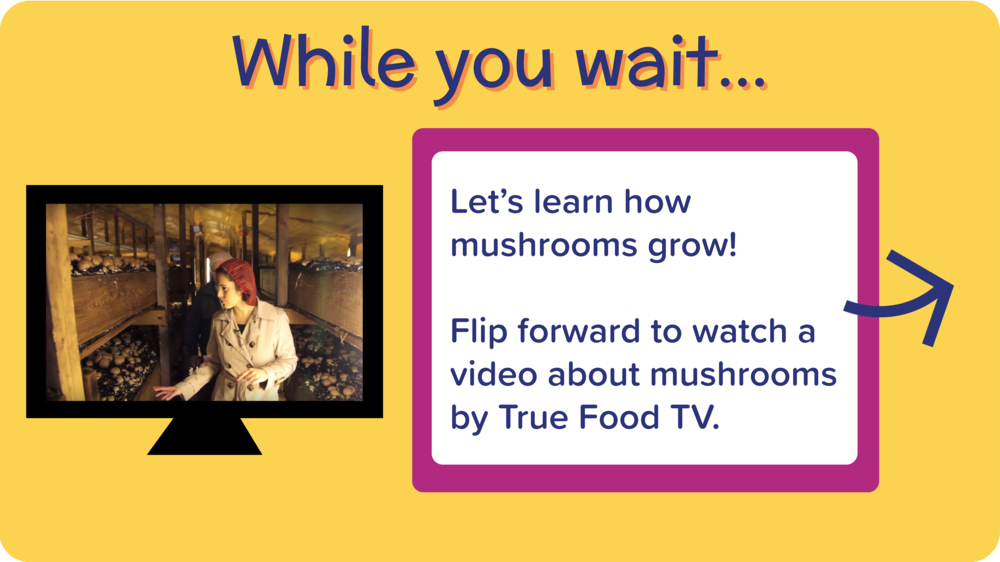 29_TomatoMushroomPizza_learn about mushroom video-01.png