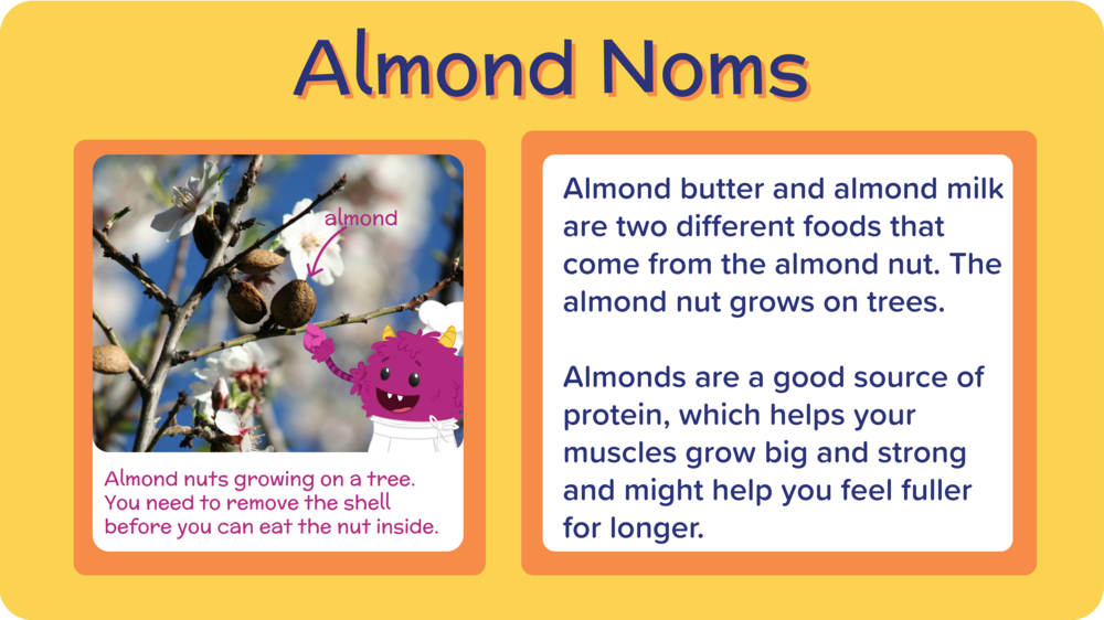 14_Mango Almond Oat Smoothie_all about almonds-01.png