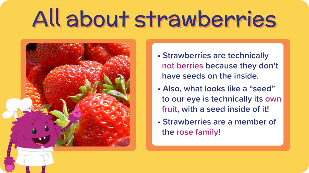 16_PB_JBuritto_AllAboutStrawberries-01.png