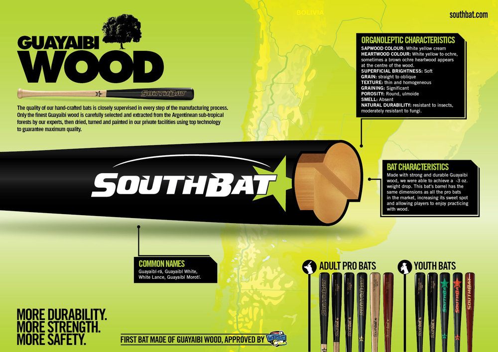 infografia Southbat_ENGLISH.jpg