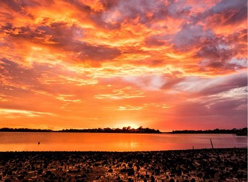 sunset 500.jpg