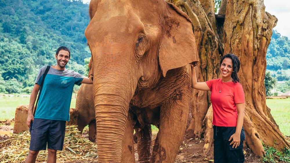 Chiang Mai Elephant Nature Park-21.jpg