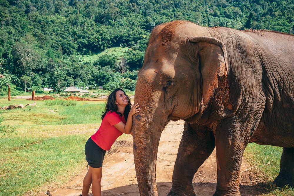 Chiang Mai Elephant Nature Park-27.jpg