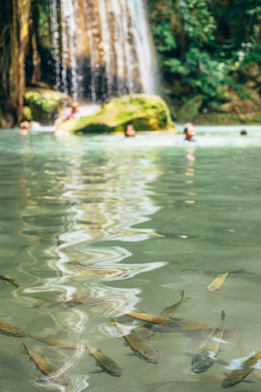 Kanchanaburi-Erawan-PhotoJourney-10.jpg