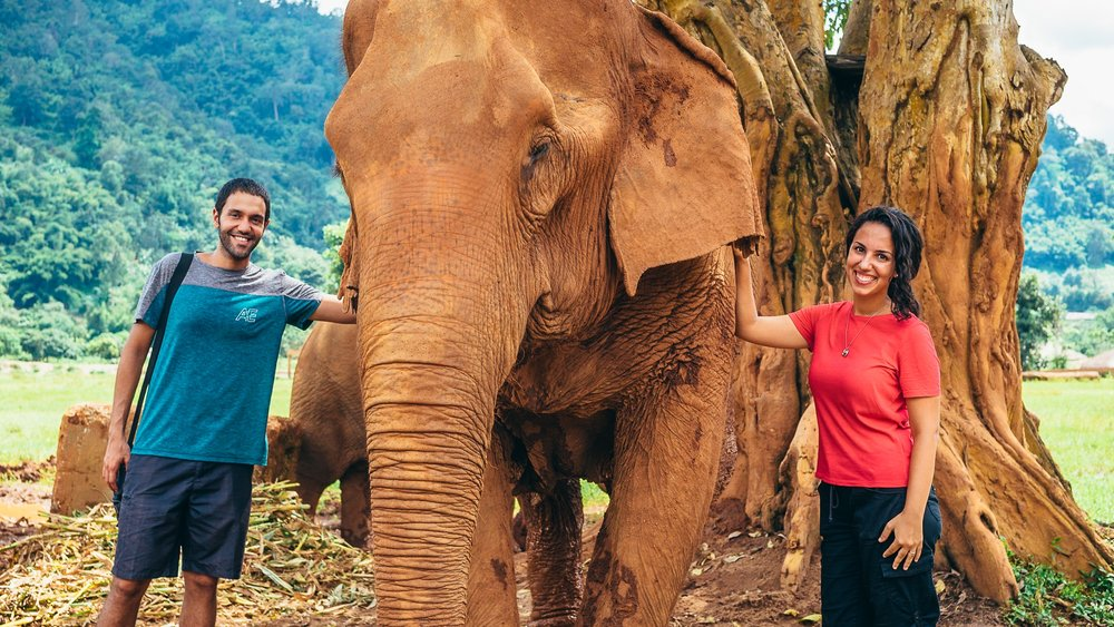 We made friends with a few elephants while in Thailand at the Elephant Nature Park, an animal rescue and rehabilitation center in Chiang Mai, Thailand. Below is one of the things that we enjoyed most in Thailand: the food.