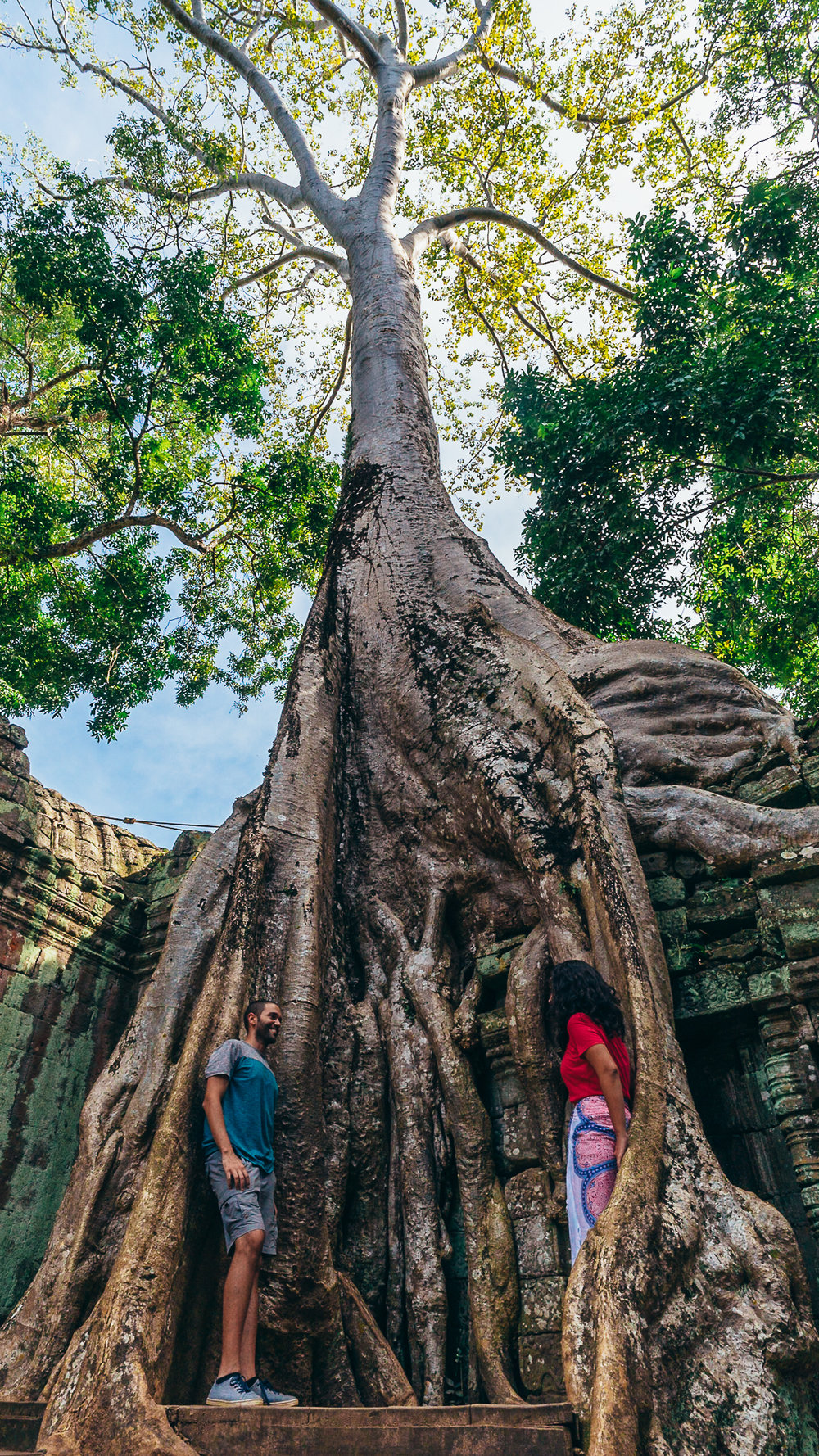 "This is in our favorite of the Angkor Wat temples in Cambodia, named ""Ta Prohm."" This temple captivated us with its larger-than-life ""kapok"" trees and engrossing, maze-like layout. Part of a Tomb Raider movie was recordered here."