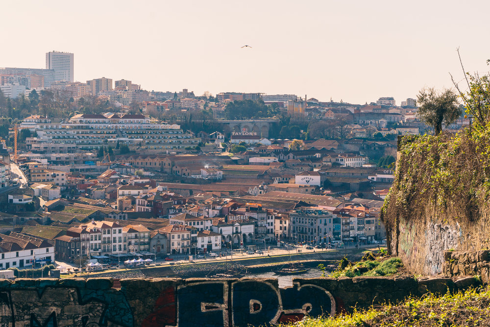 Porto Walking Tour-10.jpg