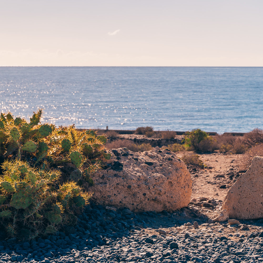 La Tejita Beach – What to do in Tenerife-2.jpg