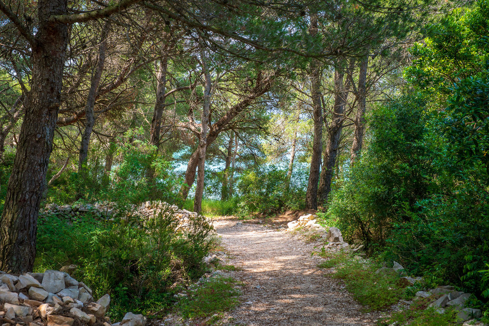 A Week in Croatia — Hvar-4.jpg