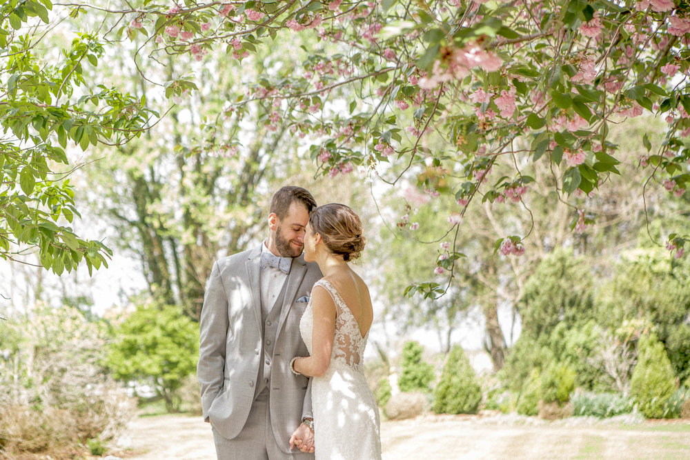 northern virginia wedding photographer-6.jpg