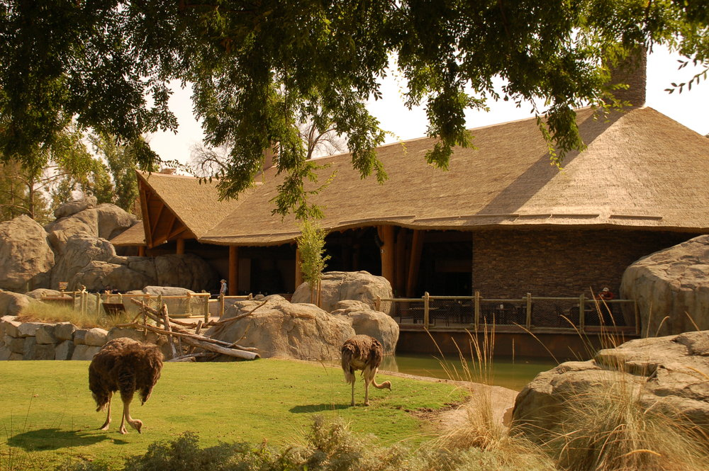 "Fresno Chaffee Zoo ""African Adventure"""