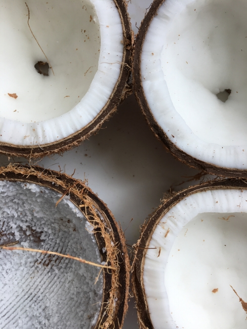 #CoconutGate 2017: To Coconut Oil or To Not Coconut Oil...