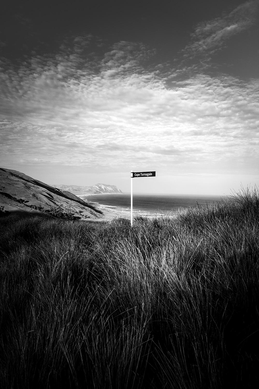 Cape_Turnagain_©ag_DSC6498 web.jpg