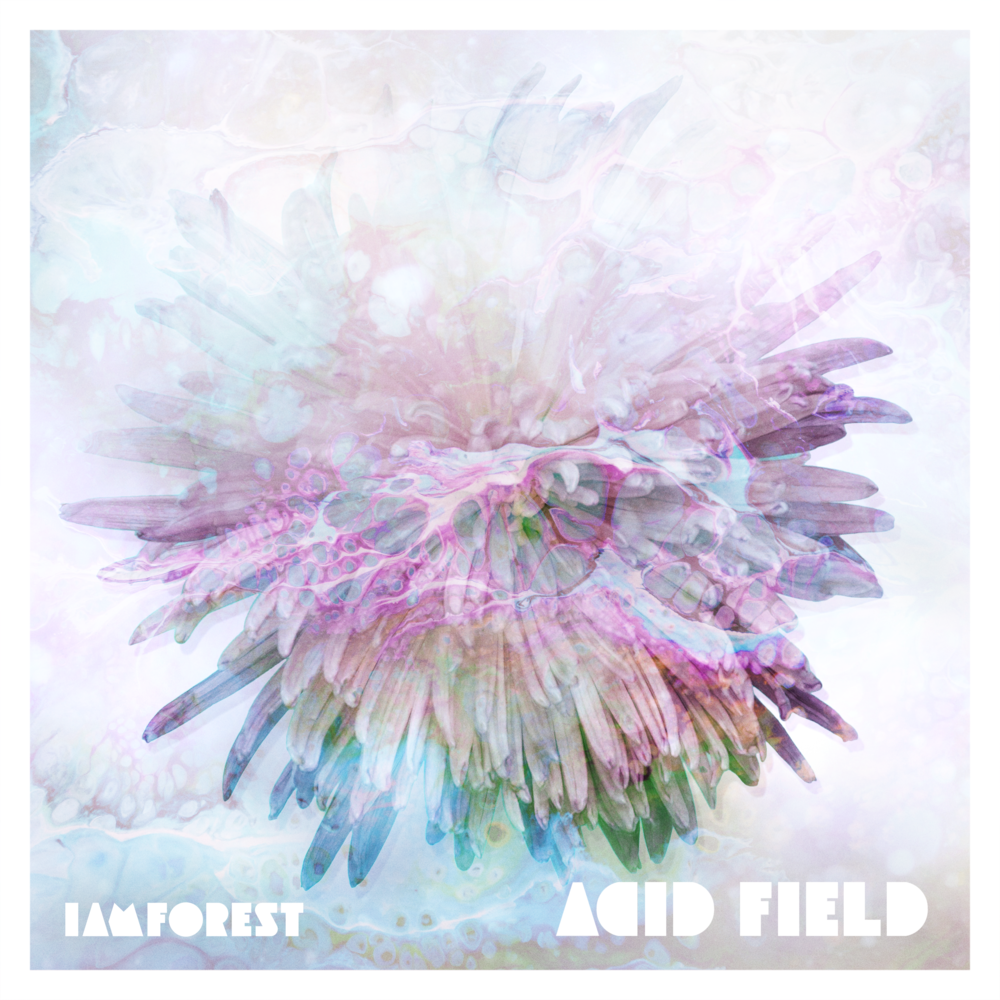 PRESS RELEASE - ACID FIELD // SINGLE