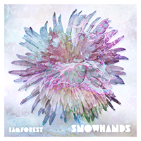 Snowhands EP Cover small