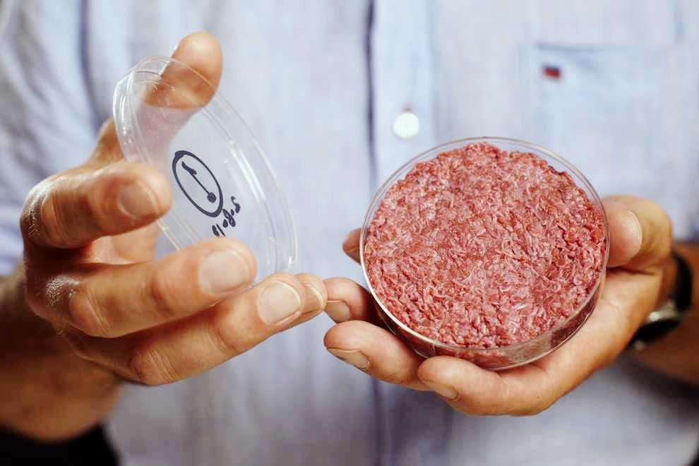 Source: Brooklyn Magazine - Modern Meadow: leaders in growing meat in a lab